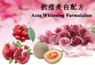 Acne Whitening Formulation (TWP001)