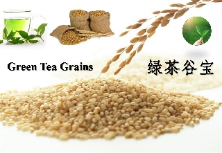 Green Tea Grains (WMG001)