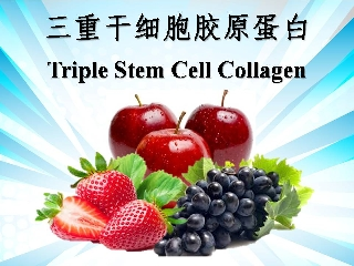 Triple Stem Cell Collagen (WTP001)